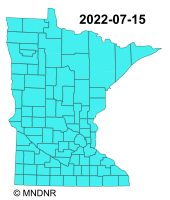 Minnesota Fire Restrictions Map