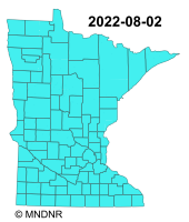 MN Burning Permit Restrictions