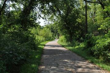Trails 1.JPG